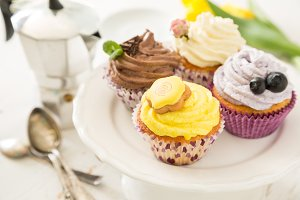 Selection of colorful cupcakes, white background