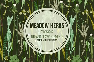 Meadow herbs