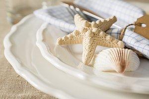 Summer marine style table setting