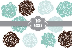 10 Decorative Roses