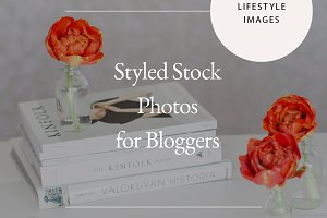 SUPER SALE! Styled Lifestyle Photos