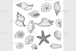 Seashell set collection.