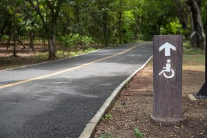 wheelchair sign road in the park