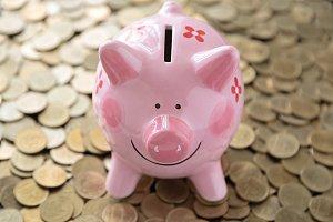 pink piggy bank on coins