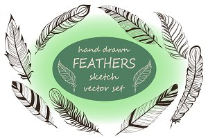 Feathers hand drawn set