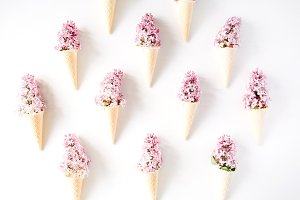 Flower cones with lilac