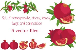 Pomegranate. Vector set.