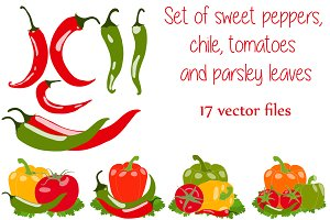 Pepper and chili peppers, vector set