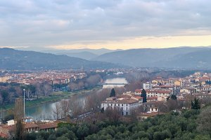 Florence top panorama (Italy).