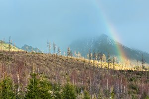Colorful rainbow in mountain.