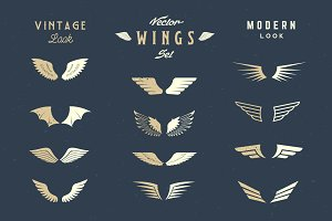 Vector Retro & Modern Look Wings Set