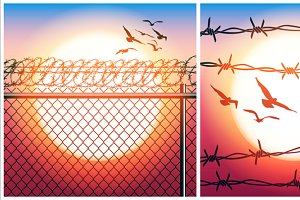 Barbed Wire and Flying Birds