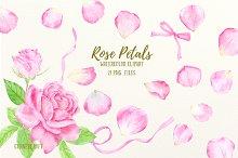 Watercolor Pink Rose Petals Clip Art