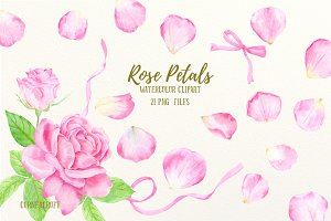 Watercolor Pink Rose Petals Clip Art