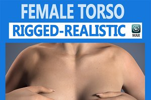 Female Torso Rigged
