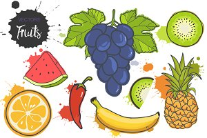 6 Fruits Vector + HOT chili