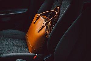 Handbag #1