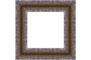 4 leopard frames
