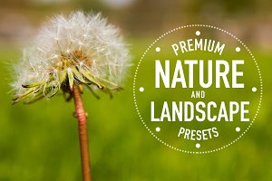 Nature and Landscape Preset Pack