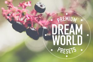 Dream World Lightroom Presets