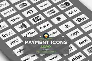 PAYMENT / CREDIT CARD VECTOR ICONS L