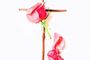 Rose on cross I Styled Stock