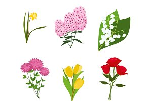 Flowers vector set