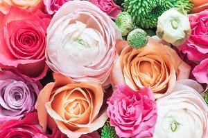 Roses I Styled Stock