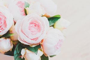 Blush peonies I Styled Stock