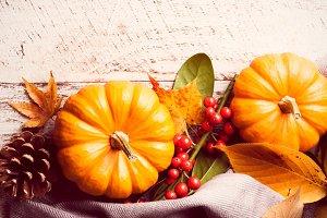 Autumn pumpkin background