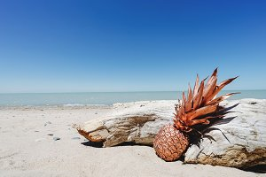 Bronze Pineapple at Beach with Wood