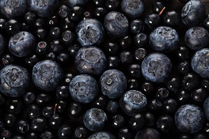 Dark blueberry closeup berry backgro