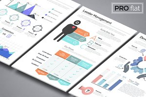 Pro Flat Infographic Brochures. P2