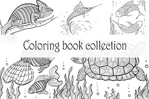 Coloring book collection