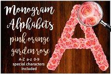 Alphabets Pink Orange Garden Rose
