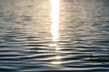 Sun Reflecting on Water - Vertical