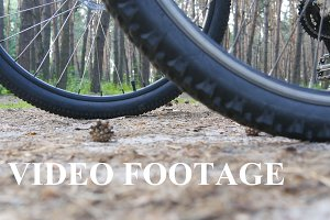 Two bikers start riding bikes through forest path. Friends cycling through wood. Low Angle View