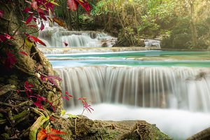 Beautiful deep forest waterfall