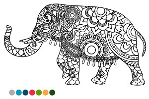 Elephant with colors samples