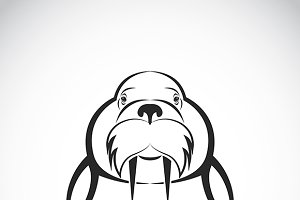 Vector image of Sea lion design