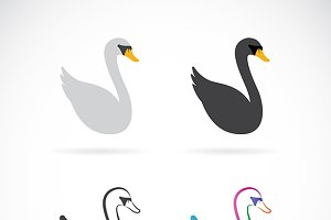 Vector image of swan design