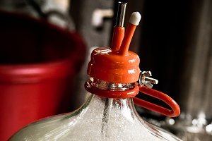 Homebrewing Carboy with thermowell