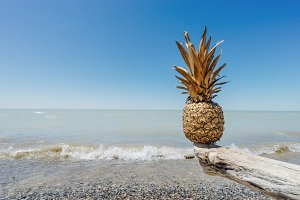 Golden Pineapple Balancing at Beach