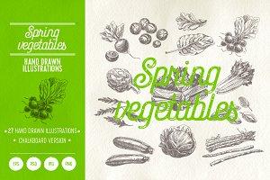 Hand drawn spring vegetables
