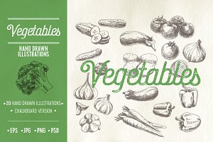 Vector hand drawn sketch vegetabls