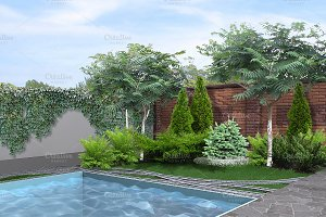 Side yard poolside, 3d rendering