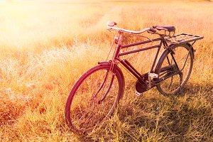 Vintage Bicycle background