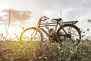 Vintage Bicycle For Background