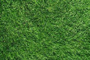 Grass Field Top View