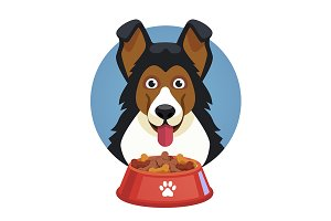 Dog pet face with red bowl